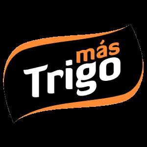 LOGO MASTRIGO